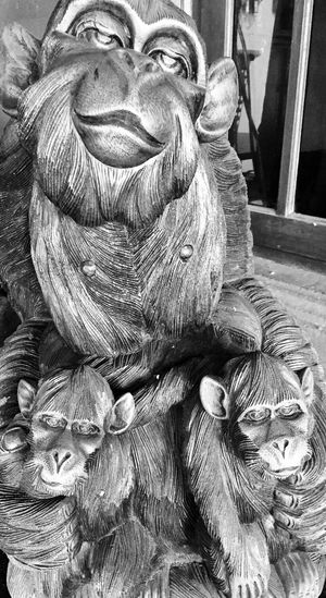 Black And White Photography Close-up Monkey Oriental Style Sculpture Statue