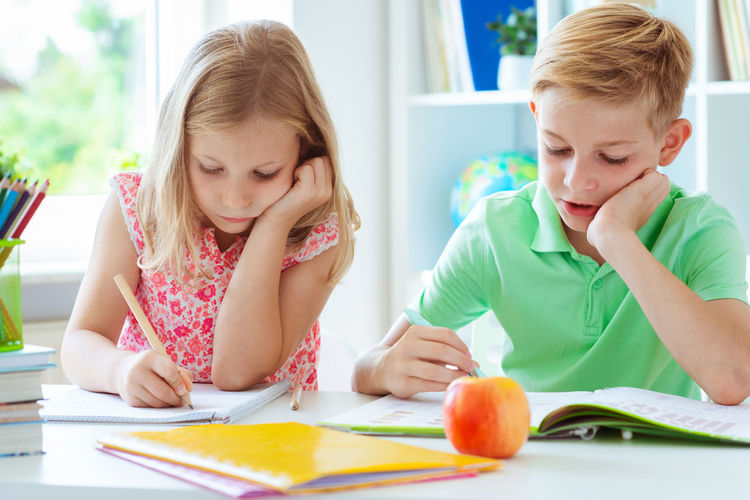 Brother and sister writing homework at home