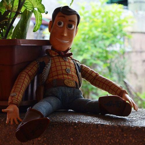a woody wednesday peepz!Toystory Woody Toy Dolls Playaz 😎Ig_philippines Ig_daily