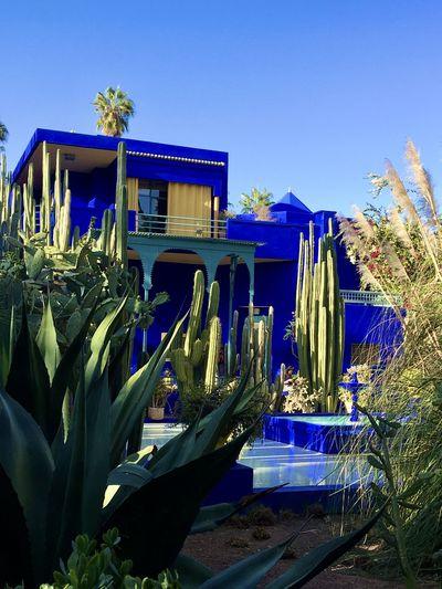 Built structure by plants against blue sky