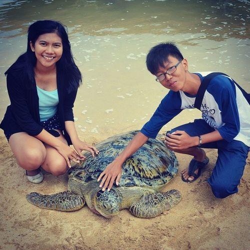 Turtle island Tanjungbenoa Bali