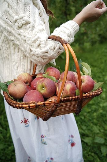 Midsection of man holding apple in basket