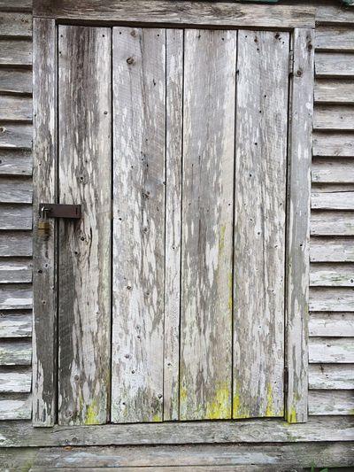 Barn Door Wood Yellow Yellow Paint Old Old Door Old Building  Travelling Pattern Rusty