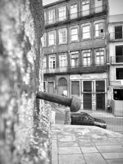 BeW Oporto, Portugal Architecture Black And White Building Building Exterior Built Structure City Day Focus On Foreground Government History Holding Metal Nature No People Outdoors Residential District The Past Tree Weapon Window