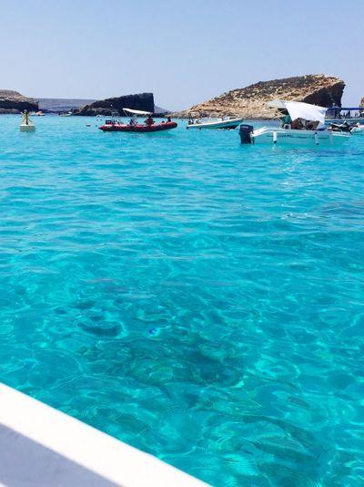 Malta Sea Clear Water Summervacation Crystal Clear Summer Beach Brautiful Bluelagoon