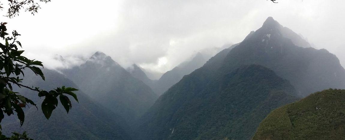 Inka Sky Fog Tree Landscape Outdoors Sky Mountain No People Nature Day South America Tree Macchu Pichu Nature Mountains Mountain Clouds