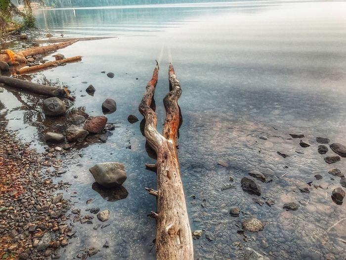 At the edge of a lake with a few rocks and a weather beaten log Oregon Odell Lake Lakeshore Water No People Outdoors Day Nature Beauty In Nature Sea Close-up EyeEmNewHere
