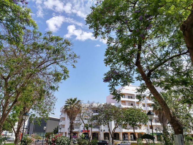 Sky City Blue Sky Green Nature Beautiful Day Godsnotdead Lgflex2