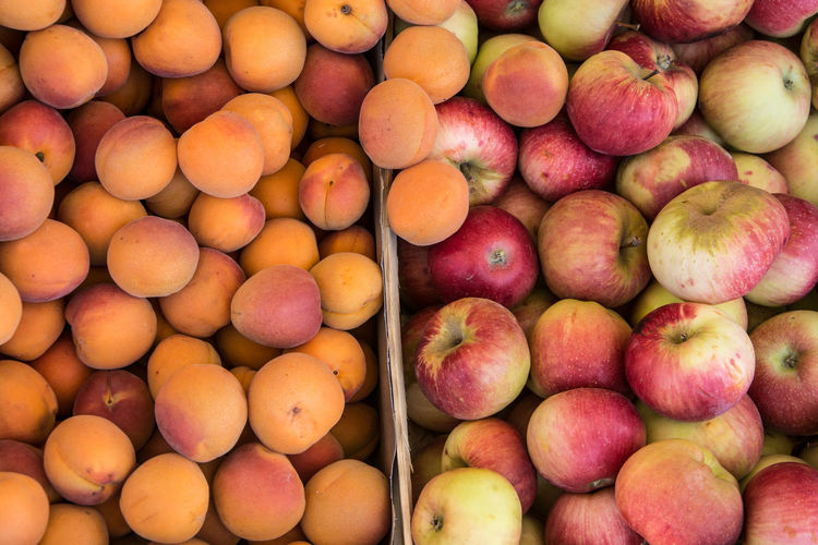 Apricots Abundance Apples Backgrounds Close-up Day Food Food And Drink For Sale Freshness Fruit Full Frame Healthy Eating Large Group Of Objects Market No People Outdoors Retail  Supermarket