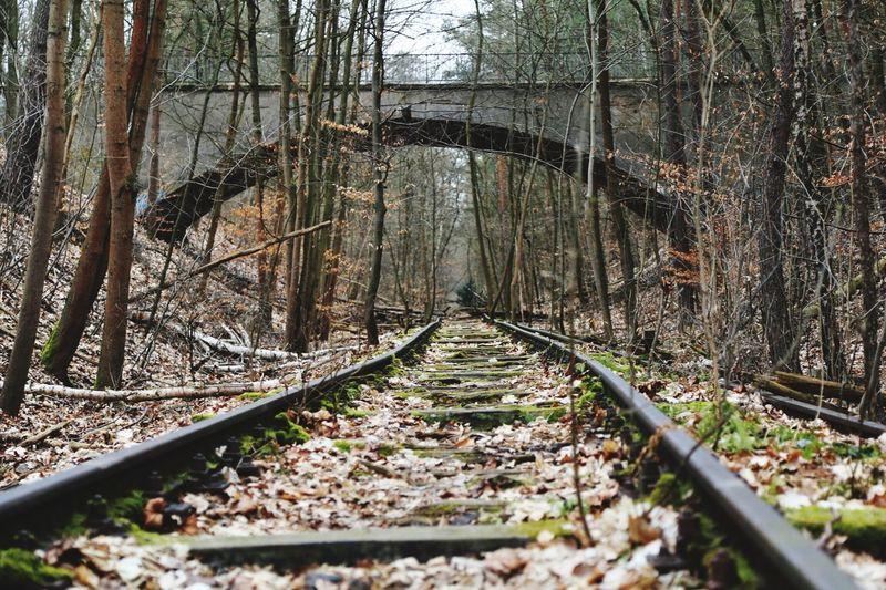 Habe heute eine Fotowanderung entlang der alten Friedhofseisenbahn in Berlin gemacht. Mehr Fotos von meiner Tour gibts bald... Berlin Fototour Railway Abandoned Abandoned Places Nature Nature_collection Perspective
