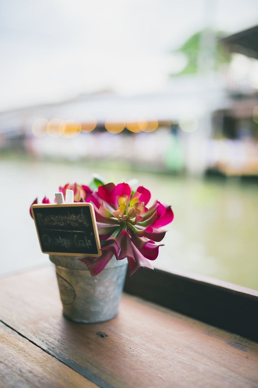 flower, table, focus on foreground, no people, close-up, wood - material, nature, beauty in nature, freshness, water, day, gift, indoors, fragility, flower head