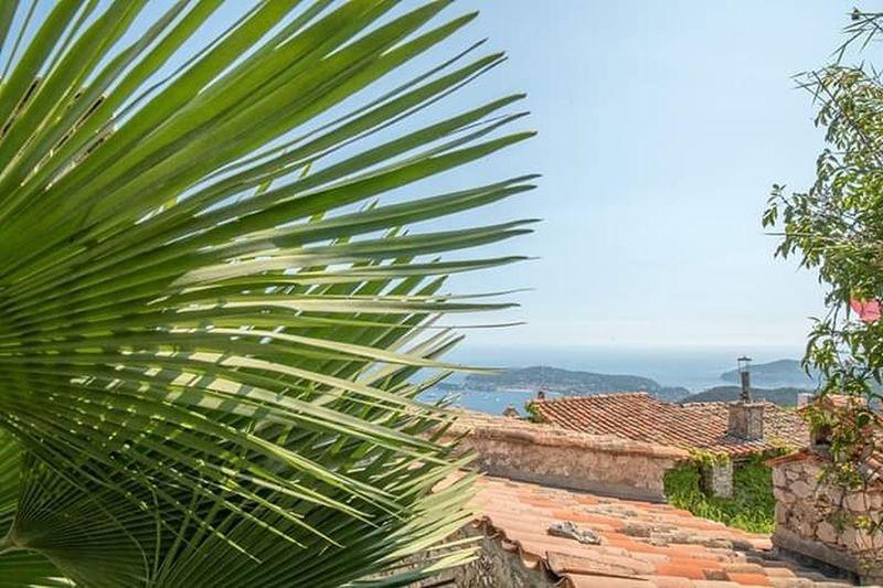 vue mer depuis les toits d'Eze Palm Tree Sea Tree Tropical Climate Beach Sky