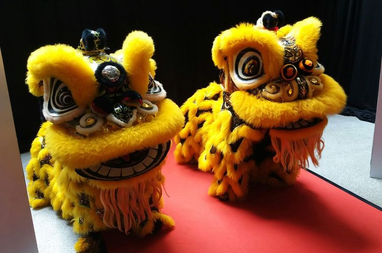 lion dance lions head yellow indoors no people day close up animal themes reptile dragon new year