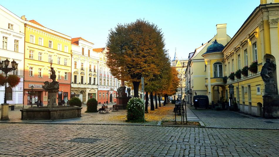 Swidnica Old Town Town Square Townhall Town Hall Town Centre Polish Town