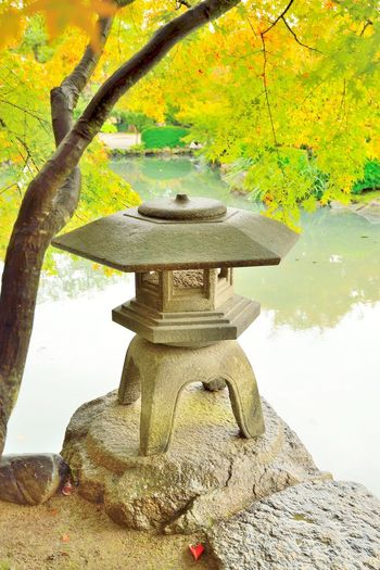 Stone lantern in Japanese garden at Toji temple in Kyoto, Japan. Beauty In Nature Day Japan Japan Photography Japanese  Japanese Culture Japanese Temple Kyoto Kyoto,japan Lantern Nature No People Outdoors Stone Stone Lantern Temple Toji Toji Temple Tree Water