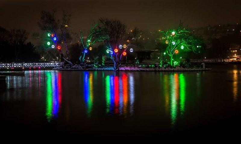 Lake Trees Tree Light Colorful Colors Reflection Waterreflection Winter City Bahcesehir Golet Canon Benimkadrajım Objektifimdenyansiyanlar Istanbul