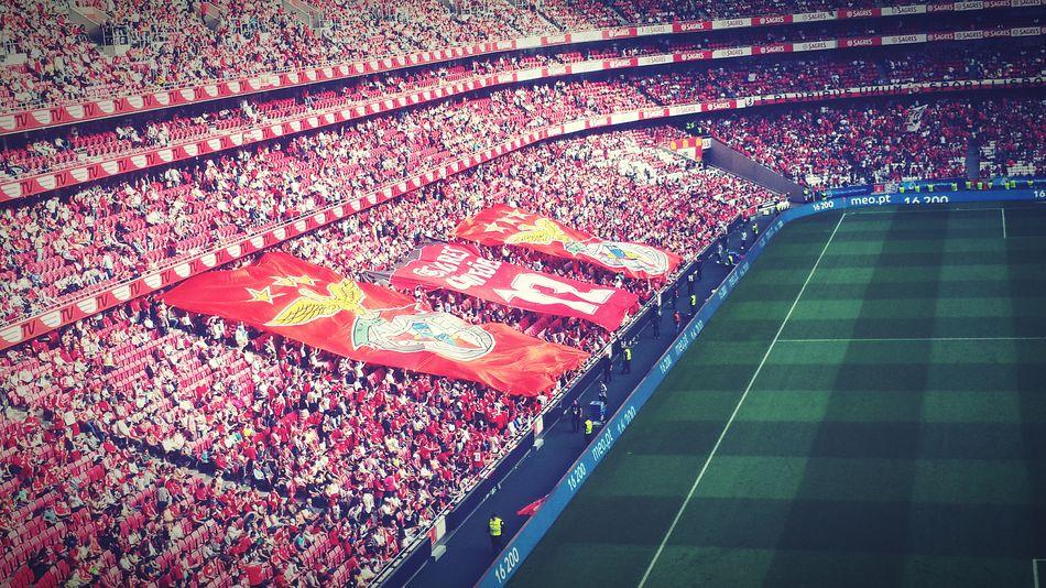 Benfica Lisboa Futebol Campeao