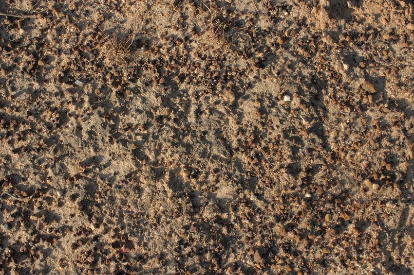 Close-up Dry Ground Rough
