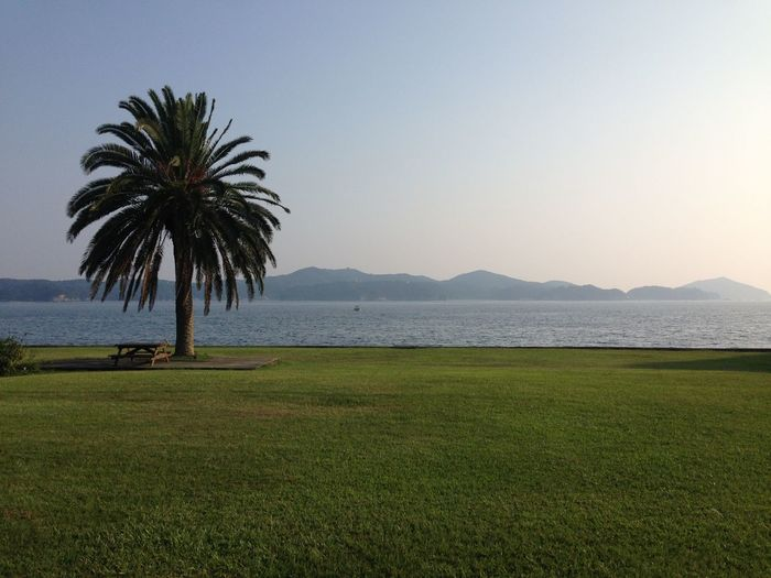 2015.07夏の海 Holiday Relaxing View Taking Photos Summertime Enjoying Life
