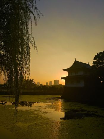 Palace Edo Castle Twilight Sunset Sunset_collection Sunset Silhouettes Water Reflections IPhoneography