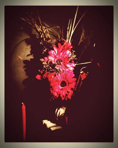 Kas© Flowers Messedupjournal Muddakas Black And White Red Candles Kitchen