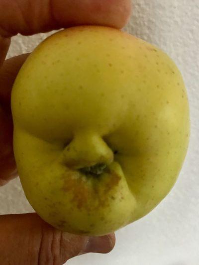 Er scheint noch zu schlafen 😔 Human Body Part Food Close-up Food And Drink Human Hand Healthy Eating Fruit