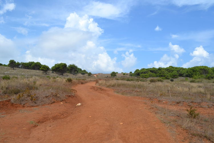 Nature Puglia Arid Climate Cloud - Sky Day Direction Dirt Dirt Road Environment Grass Land Landscape Nature No People Non-urban Scene Plant Red Landscape Road Scenics - Nature Semi-arid Sky Tranquil Scene Tranquility Transportation Tree