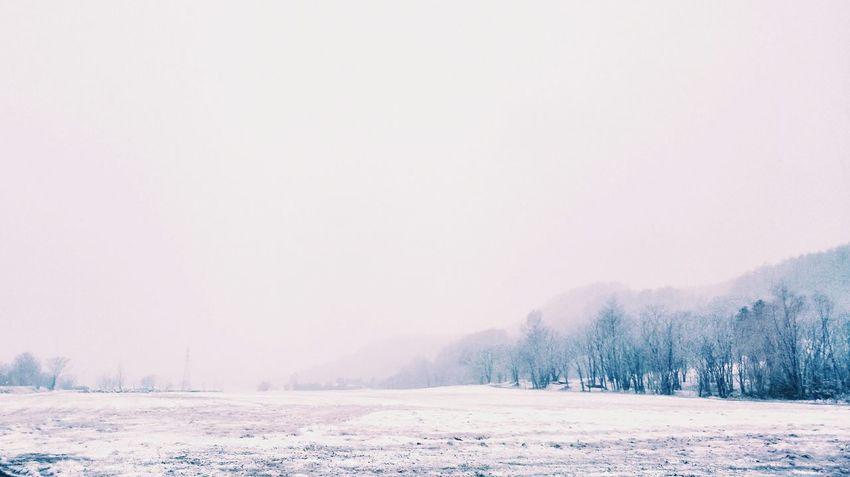 Today snowy❄ Snow Nature Frozen Landscape Snowing Beauty In Nature Lakescape 北海道 Black_chica1704 Chica's Winter Landscape Photography Nature Hokkaido Rural Scene Cloud - Sky Scenics Snowlandscape