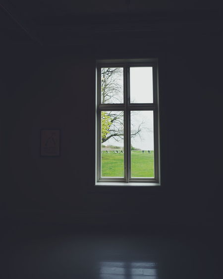 Window view Architecture Darkness Darkness And Light Day Home Interior Indoors  Light And Shadow No People Reflection Room Tree View Window Window Reflections Window View Windows BYOPaper!