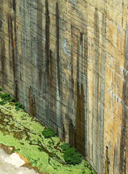 Alga Algarve Brown Brown And Green Concrete Concrete Jungle Concrete Wall Dam Damming El Pintado Embalse De El Pintado Engineering G Presa El Pintado Seaweed Spillway Verdina