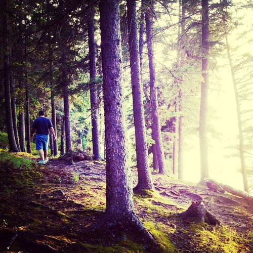 Hiking Nature Trails Soulsearching