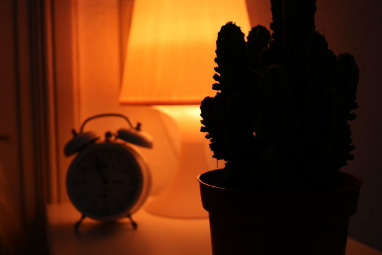 Close-up of silhouette potted plant on table by illuminated electric lamp at home