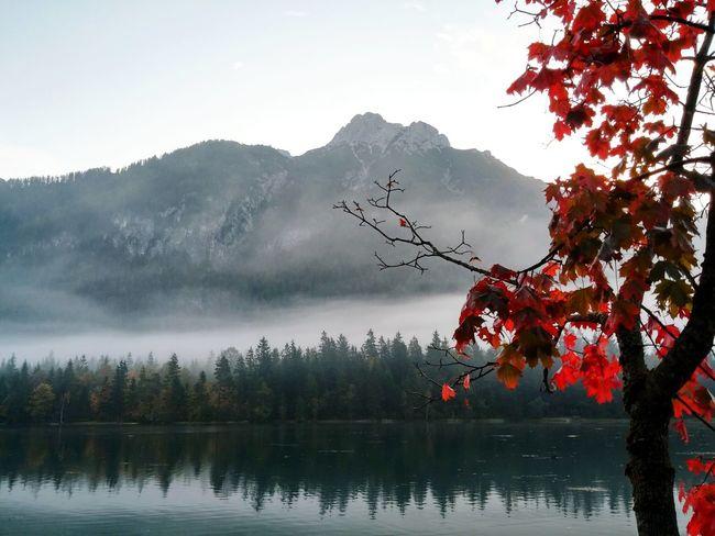 Fall Beauty Austria Tirol  Fall Mountains Watermirror