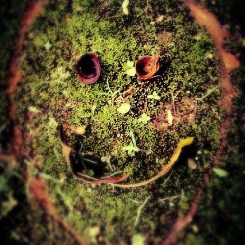 لا بأس إن كنت وحيداً فأنت قادر على أن ترسم إبتسامتك بنفسك ☺ عدستي عدستي_عيني_الثالثة مشاعر إبتسامه ماليزيا هدوء رمزيات