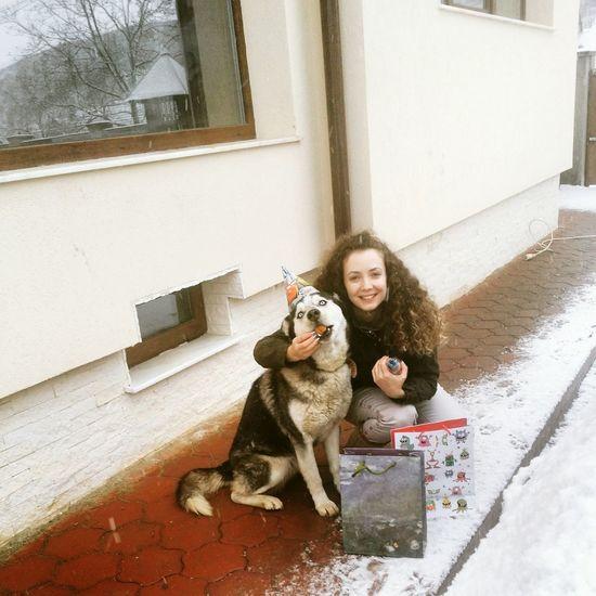 Happy 1st Birthday to our amazing Jolie (Folie)! ♡ MyfirstEyemphoto 🐶🐺ilovemydogs Ilovemydog Huskyphotography Husky Love Siberian Husky HappyBirthday Dog Oneyearsold Pets Corner