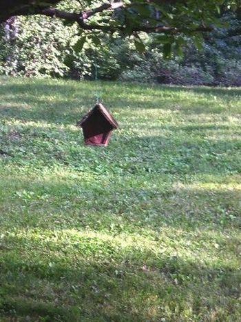 Flying birdhouse