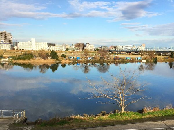 The river is reflecting the clouds. Tama River River Sky Water Tree Nature Cloud Clouds And Sky Cloud - Sky Reflections Reflections In The Water Water Reflections