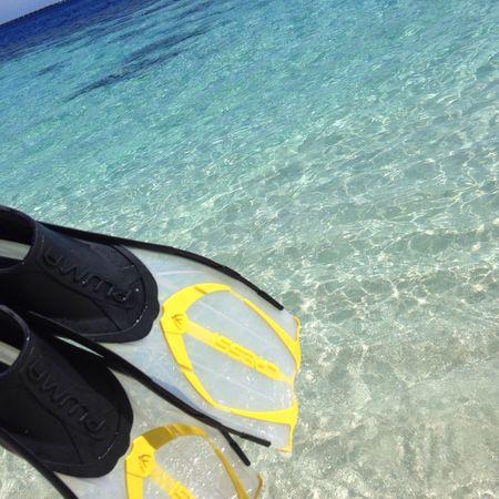 Cressi Maldives Snorkeling Holiday vilamendhoo,2014