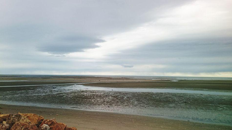 New Zealand DECEMBER2015 Golden Bay Collingwood Low Tide