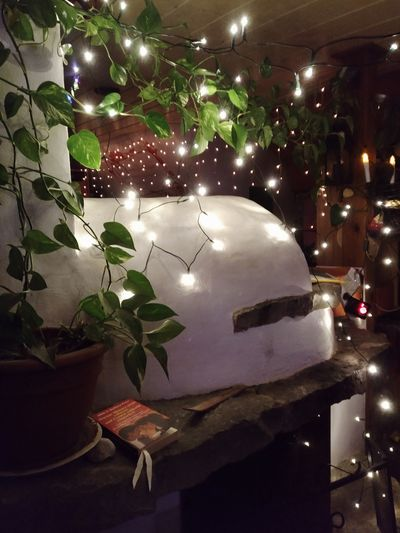 Night No People Indoors  Space Close-up Germany Europe Greenwarden Photography Relaxing Lights Light Party - Social Event Mood Branch Backgrounds Leaf EyeEmNewHere