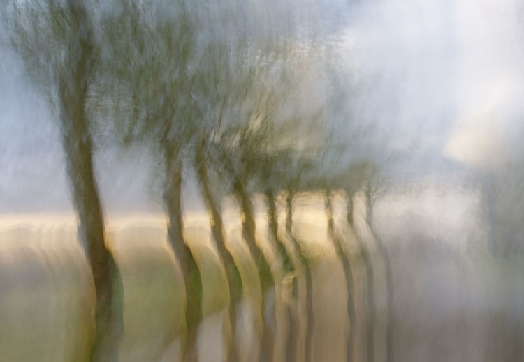 Blurred motion of trees on field against sky