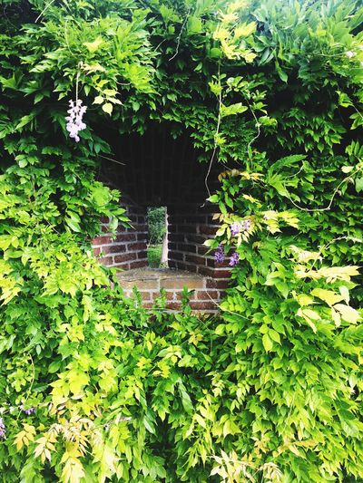 Sightseeing Historical Sights Castle Taking Photos Kasteel Amerongen Scenery Old Buildings