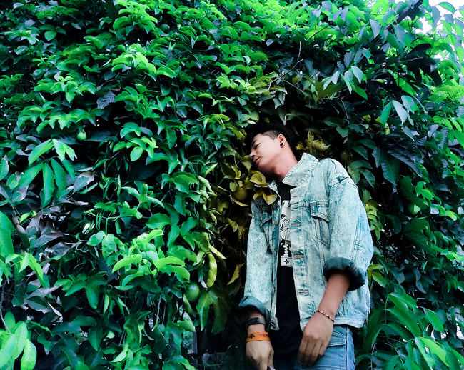 Low section of boy looking at plants