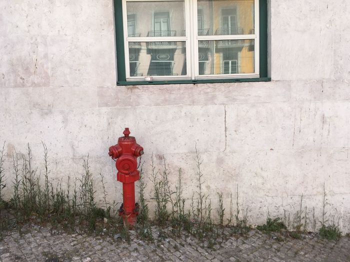 Man on red window