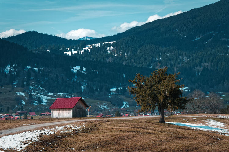 Tree and cabine Mountain Beauty In Nature Tree Nature Snow No People Landscape Landschaft Mountains Valley Wanderlust Travel Path Way Woods Moody Retro Stockphoto Horizon Over Water Spring Winter Bavaria Alps Bayern Berge Alpen