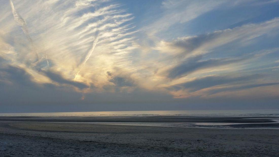 Bray-Dunes Beach Dunes France