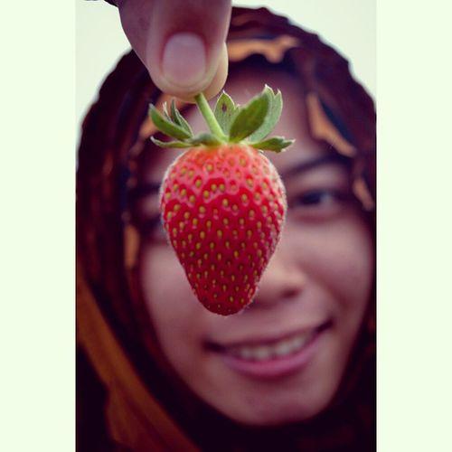 Ada keindahan di balik buah strawberry ini.. Photogrid Instamoment Bestmoment Keteb Strawberry Bestphoto Jalanjalan Kebunstrawberry