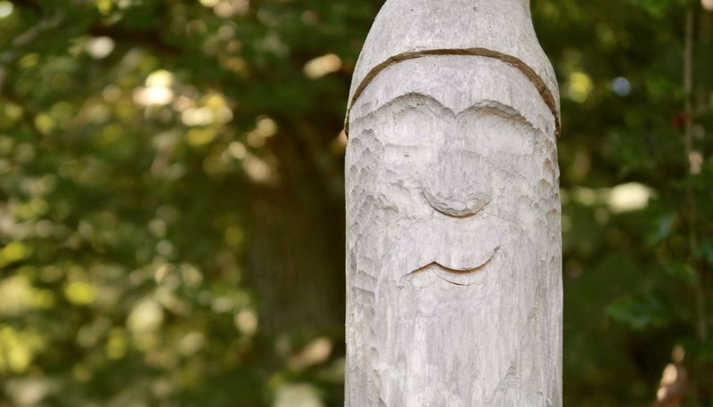 Day Focus On Foreground Green Color Wood Art Wood - Material Woodman Face In Wood Face Motive No People Non-urban Scene Forrest