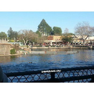 Going to Pirareslairdisneyland Tomsoyerisland Disneycalifornia Disneyland_cali