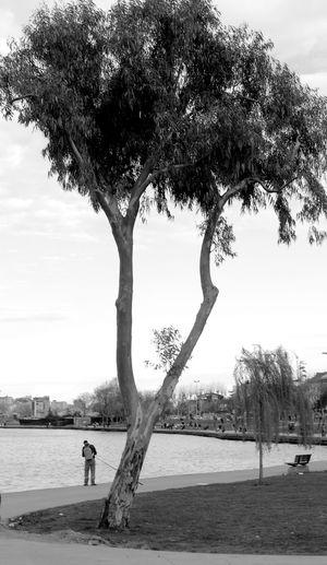 Tree Only Men People Magnumphotos Objektifimdenyansıyanlar Canonphotography EyeEm Gallery Canon_photos Sanatfotograf City Life Worldphotographyday Canonturkey MonochromePhotography Canon Worldpeople Citypeople Life Haliç Sanat Monochrome Sky